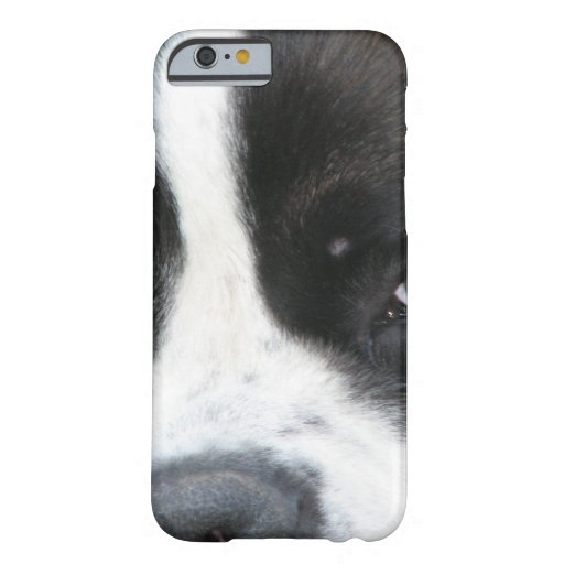 Chiots de St Bernard Coque iPhone 6 Barely There