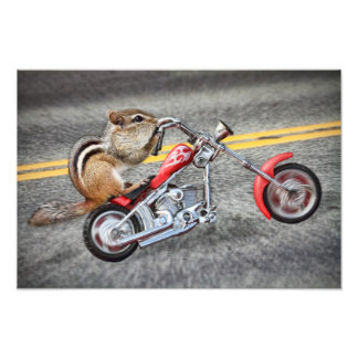 Chipmunk Biker Riding a Motorcycle Photographic Print