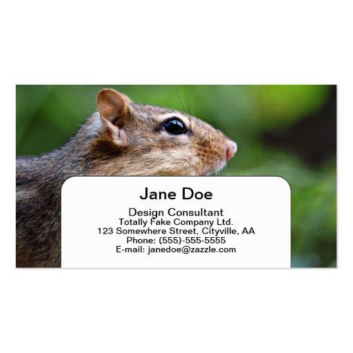 Chipmunk Business Card Templates
