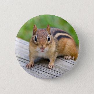 Chipmunk Button