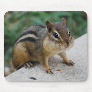 Chipmunk Cheeks Mouse Pad