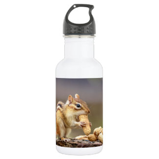Chipmunk eating a peanut 532 ml water bottle