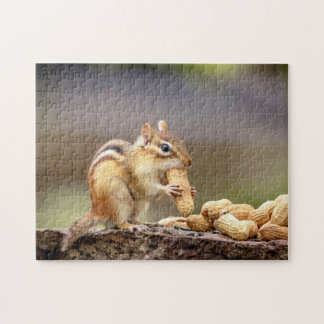 Chipmunk eating a peanut jigsaw puzzle