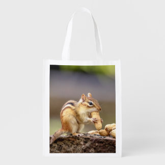 Chipmunk eating a peanut reusable grocery bag