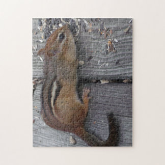 Chipmunk Eating Jigsaw Puzzle