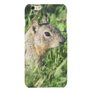 Chipmunk iphone6/6s phone case