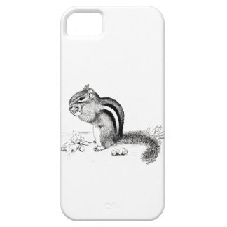 Chipmunk iPhone 5 Covers