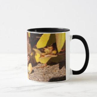 Chipmunk -Mug Mug