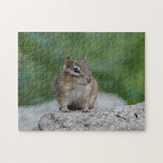 Chipmunk on a stone wall jigsaw puzzle