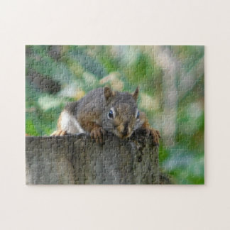 Chipmunk On Fencepost Puzzles