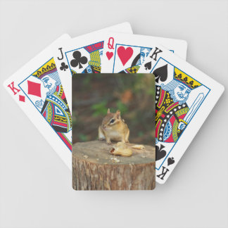 Chipmunk Poker Deck