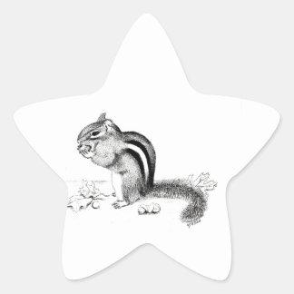 Chipmunk Star Sticker