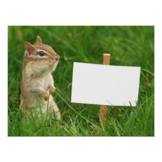 chipmunk with blank sign
