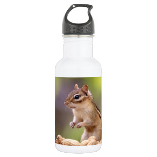 Chipmunk with peanuts 532 ml water bottle