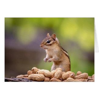Chipmunk with peanuts card