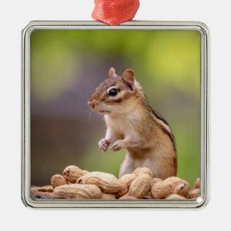Chipmunk with peanuts metal ornament
