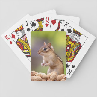 Chipmunk with peanuts playing cards