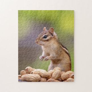 Chipmunk with peanuts puzzle