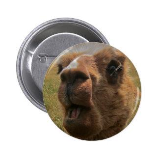 Chipper Alpaca Pinback Button