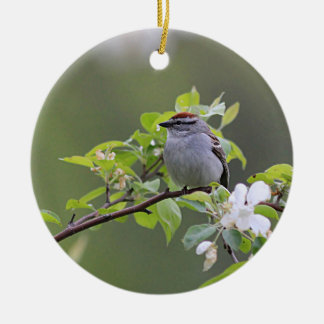 Chipping Sparrow Ceramic Ornament