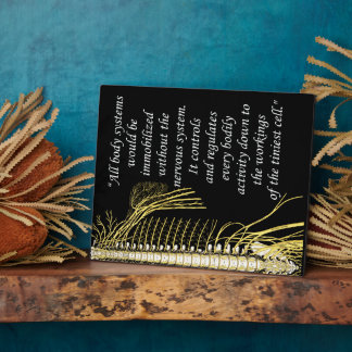 Chiropractic Nervous System Quote Easel Display Plaques