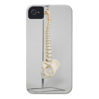 Chiropractic skeleton iPhone 4 covers