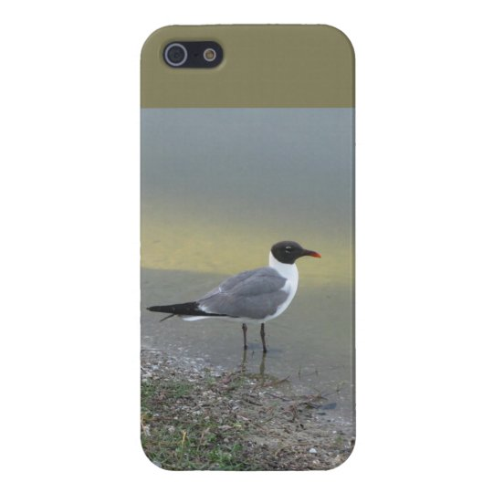 Chirp, From the River's Edge - IPhone 5/5S Case