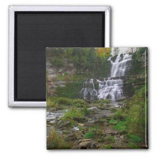 Chittenango Falls Magnet