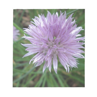 Chive Blossom Notepad