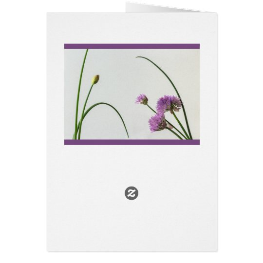 chives in bloom card