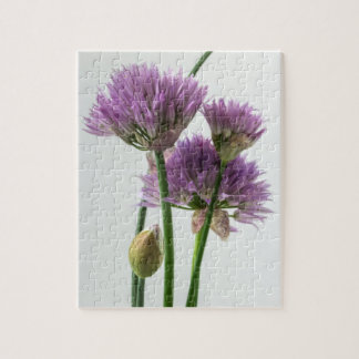 chives in bloom jigsaw puzzle