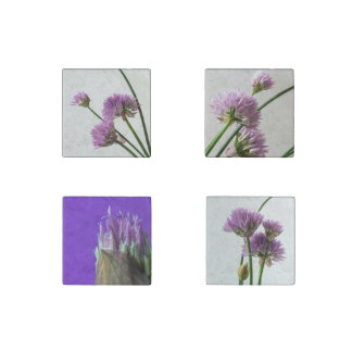 chives in bloom stone magnets