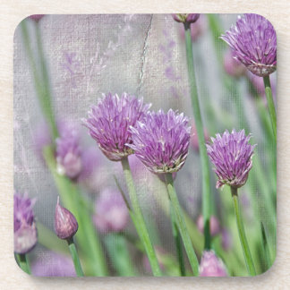 Chives in texture beverage coasters