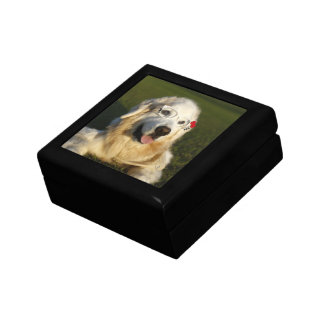 CHO CHO giftbox Jewelry Boxes