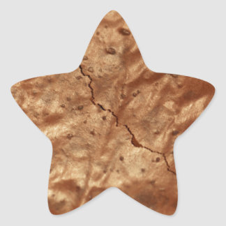 Chocolate cover of a cake star sticker