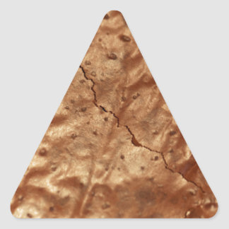 Chocolate cover of a cake triangle sticker