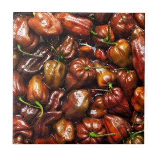 Chocolate Habanero Ceramic Tiles