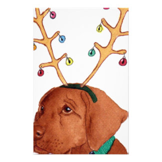 Chocolate Holiday Lab Stationery