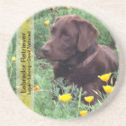 Chocolate Lab in California Poppy Patch Coaster