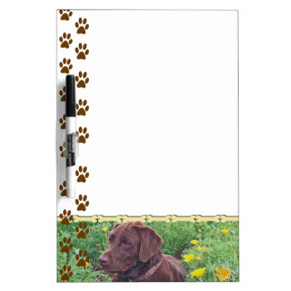 Chocolate Lab in California Poppy Patch Dry-Erase Boards