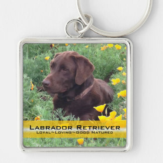 Chocolate Lab in California Poppy Patch Keychain