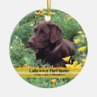 Chocolate Lab in California Poppy Patch Round Ceramic Ornament