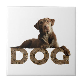 Chocolate Lab Laying Lounging on the word DOG Ceramic Tile