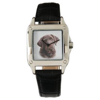 Chocolate lab puppy watch