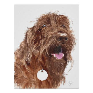 Chocolate Labradoodle #1 Canvas print