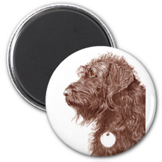 Chocolate Labradoodle Magnet