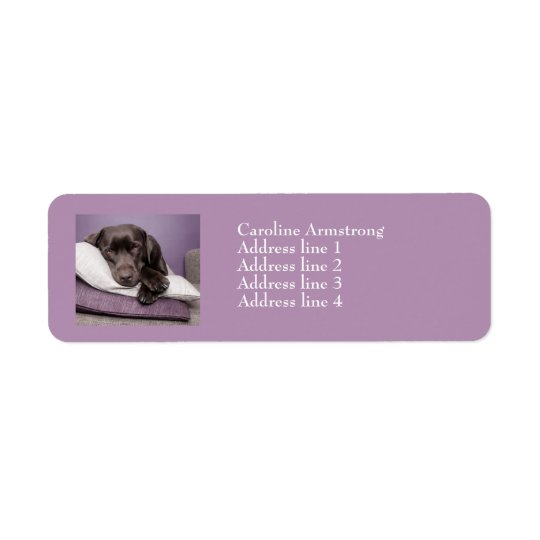 Chocolate labrador dog custom address labels