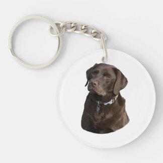 Chocolate Labrador dog photo portrait Keychain