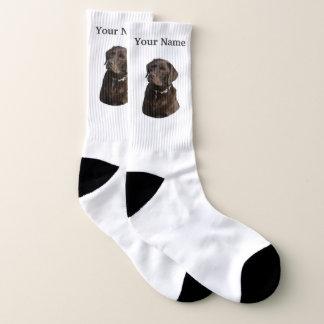 Chocolate labrador dog socks