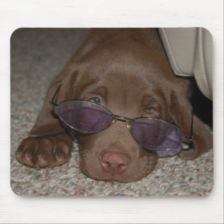 Chocolate Labrador Puppy Mousepad